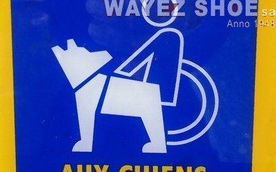 Wayez Shoe sa - En premier plan